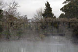 Geothermal activity in Rotorua