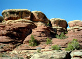 Canyonlands View Five