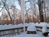 A HISTORIC SNOW;  FEBRUARY  2010