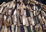 Drying Wood Pile