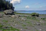 Osborn Bay