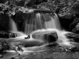 wHunting Creek BW.jpg