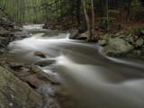wHunting Creek in Spring1 P4261193.jpg