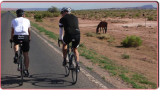 Riding by One of the Local