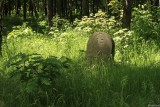 Cmentarz żydowski na Bródnie