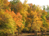 Passage of Autumn 2007