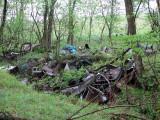 Detritus of humankind