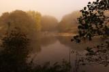 Wye misty view