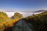 Rhayader lost in the mist