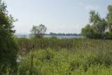 The bay, Harbor Springs, MI