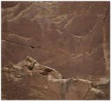 Bighorn Sheep Petroglyph