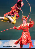 Colour and Glamour of Chinese Opera 2008