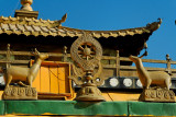 Gandan Monestary.  The two deer facing the wheel are an important Buddhist symbol.
