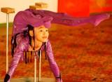 Contortionist, Tumen Ekh National Performers