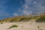 Sea Oaks New Smyrna Beach Florida