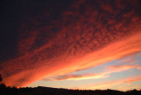 Fall Sky Early Evening, Dumfries, VA