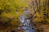 Prince William Forest National Park, VA