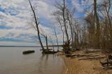 Early Spring  -- Bushey Point Leesylvania State Park on the Potomac River