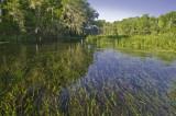 Itchetucknee River, FL