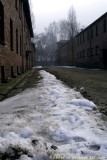 raccontare Auschwitz  - Birkenau 2
