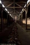 raccontare Auschwitz  - Birkenau 16