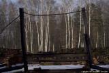 raccontare Auschwitz  - Birkenau 20
