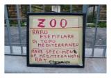 Museo all'Aperto di Fausto Delle Chiaie 89.jpg