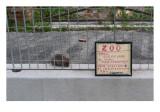 Museo all'Aperto di Fausto Delle Chiaie 90.jpg