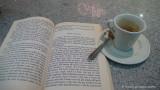 un caffé con Popper e Lorenz