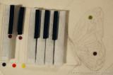 come nuvole i tasti del pianoforte e le ali della farfalla di Fabio