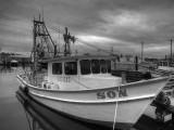 Shrimp Boat Son
