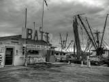 Bait Shack - Fulton Harbor