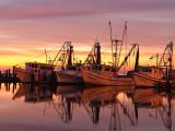 Fulton Harbor sunrise