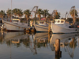 Shrimp Boats - Fulton Harbor