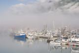 Morning Fog - Valdez, AK