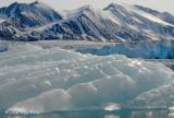 Iceberg, Liefdefjorden Svalbard 1