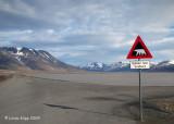 Longyearbyen,  Svalbard  Norway  2
