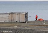 Trapper Hut, Diskobuka Svalbard 1