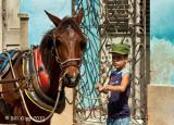 Cuba Trindad People B Klipp Feb 2010 150ass.JPG