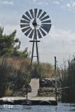 Delta Scenes Windmill 1