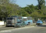 Camel Bus 2