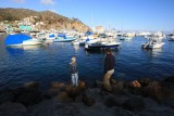 Troop 90 Goes to Catalina Island, October 2007