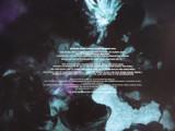 Disintegration Vinyl 3.jpg