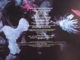 Disintegration Vinyl 4.jpg