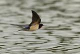 flying_lv