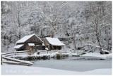 2010-02-06_332_SnowW.jpg