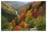 Autumn at  Lindy Overlook Black Water Falls State Park, WV