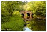 Summer Along Pidcock Stone Bridge