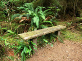 Bench Objects