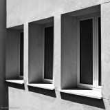 (365 -310) La (s) ventana (s)
